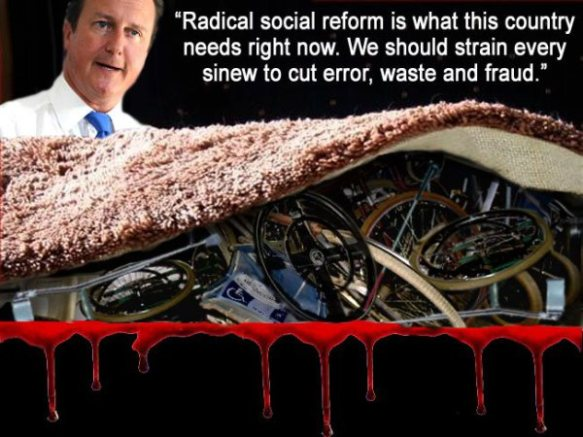 Cameron soc reform